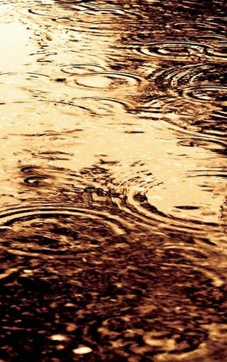风景壁纸 自然风景壁纸 唯美雨天手机壁纸