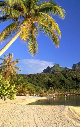 热带岛屿海滩风景手机壁纸