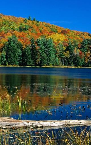 秋天的山水自然风景壁纸