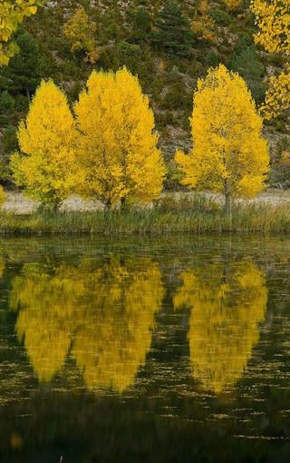大自然四季风景高清手机壁纸