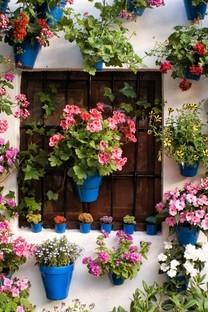 巧用鲜花壁纸装点美家壁纸