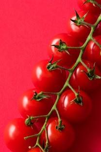绿色营养丰富的高清蔬菜壁纸