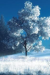 冬季森林雪景壁纸