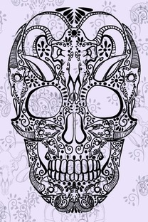 多彩纯色背景骷髅头手机壁纸