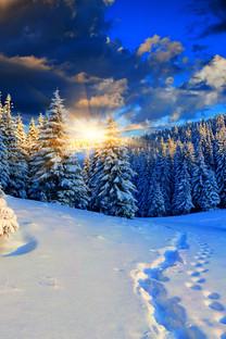 冬季唯美风景手机桌面
