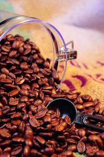 咖啡豆主题手机壁纸