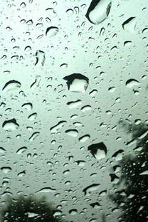 雨中美景高清手机壁纸