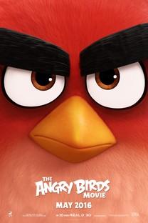 愤怒的小鸟大电影手机壁纸