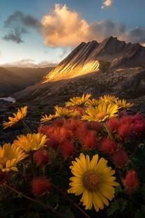 绝美的自然美景图片壁纸3