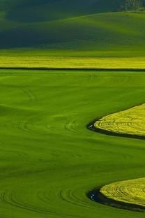 风景美丽的草原图片大全壁纸