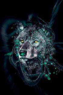 狼图片高清手机壁纸