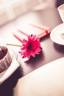 托盘里的各种小蛋糕高清图片壁纸