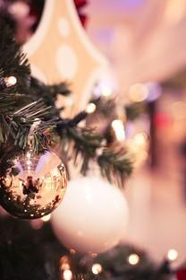 美丽的圣诞树高清图片壁纸