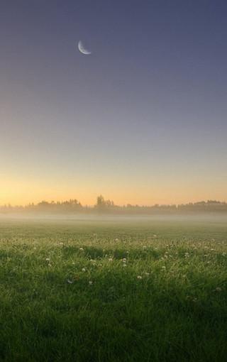 霧蒙蒙的自然高清壁紙