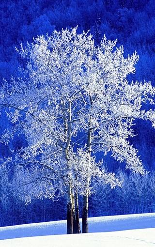 藍色主題唯美手機壁紙