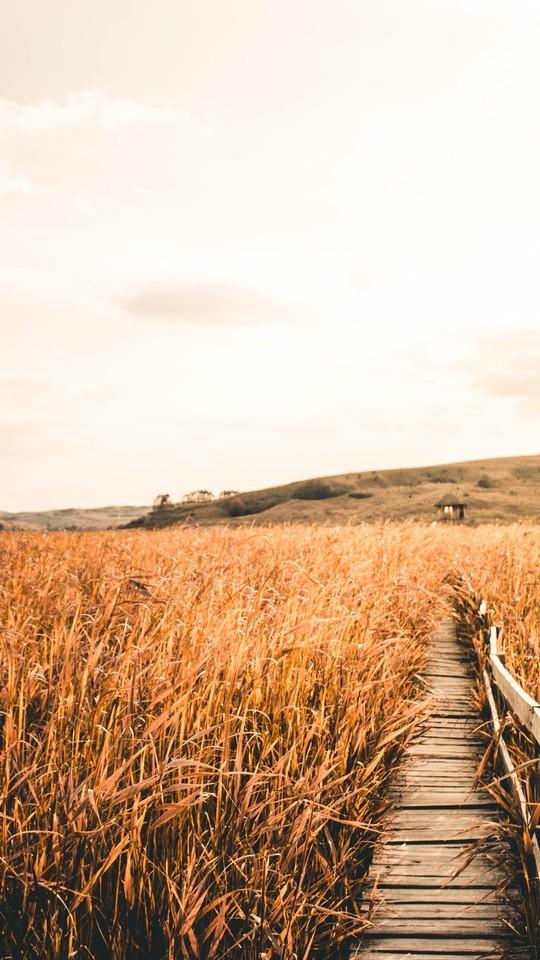 高清唯美自然风景摄影图片壁纸