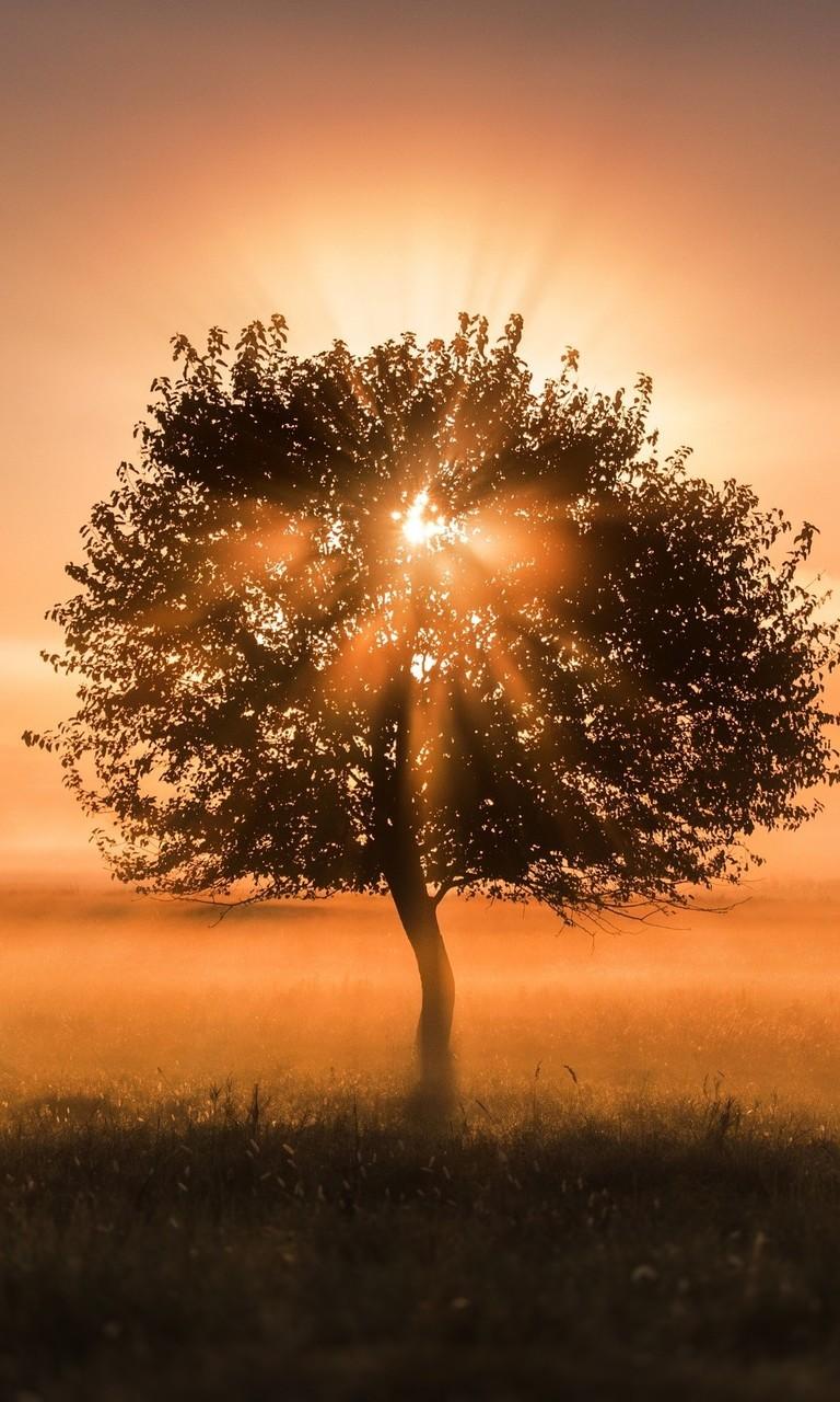 唯美夕阳风景高清图片壁纸